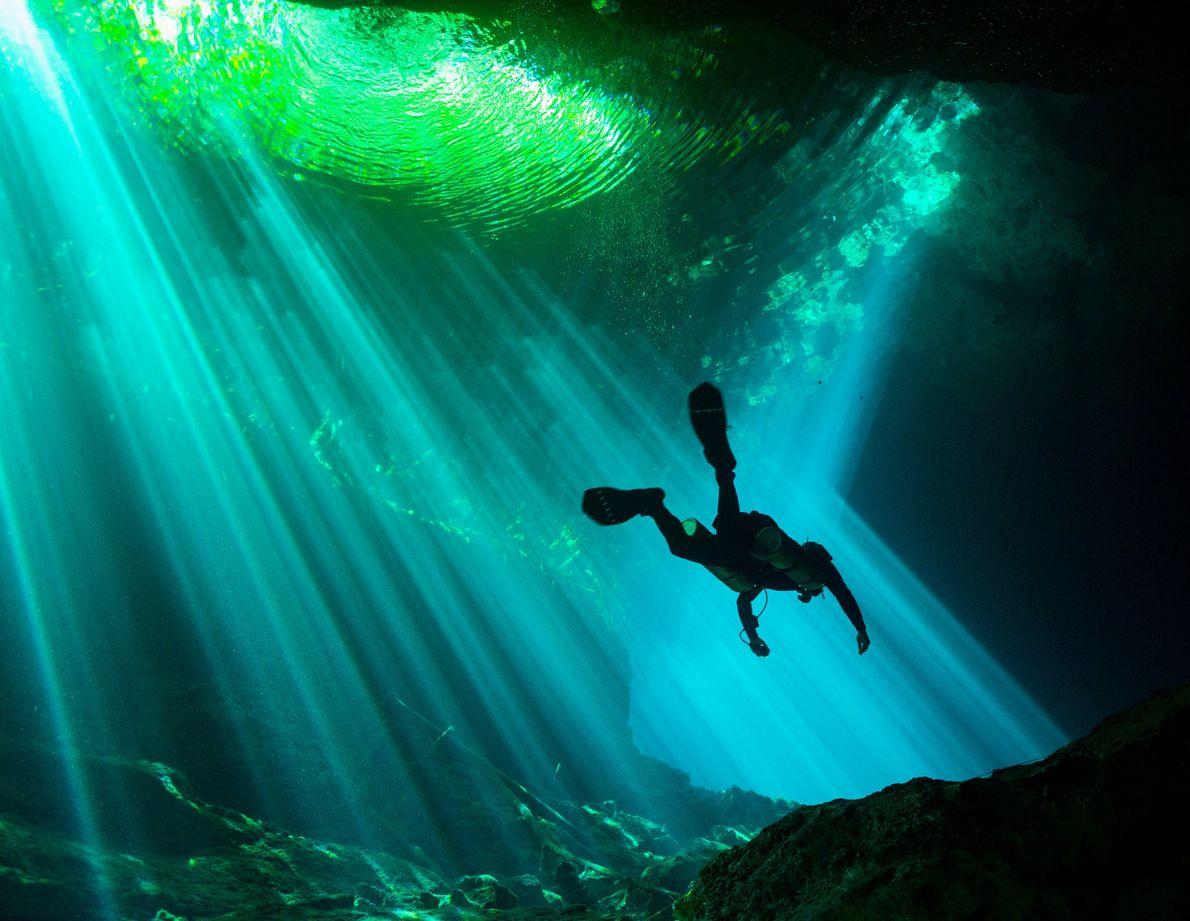 Mergulhador.