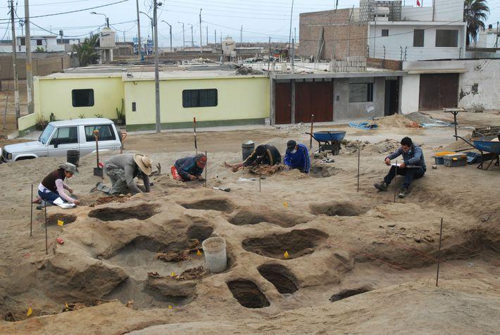 Arqueólogos a trabalhar