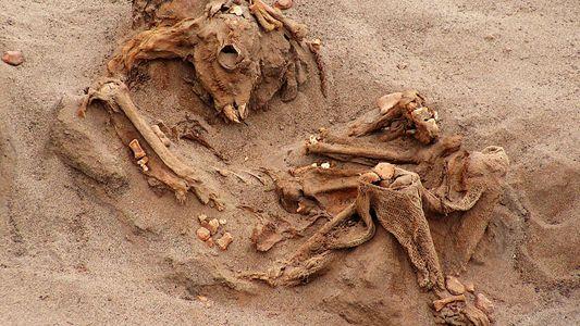 Exclusivo: o Maior Sacrifício em Massa de Crianças no Peru