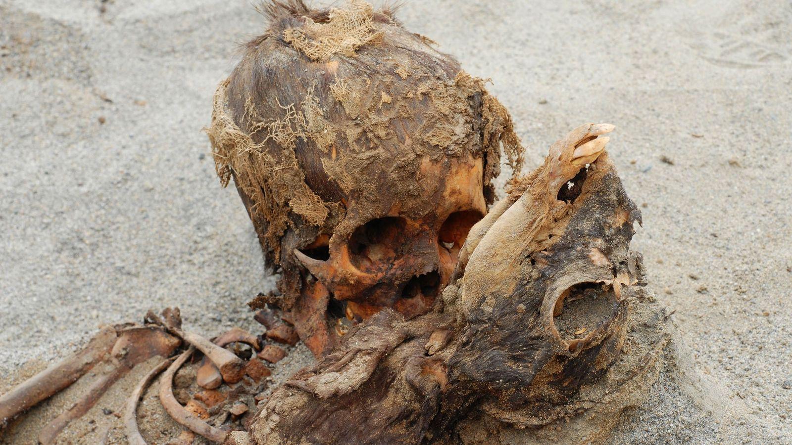 Ossadas de criança e lama sacrificados no Peru