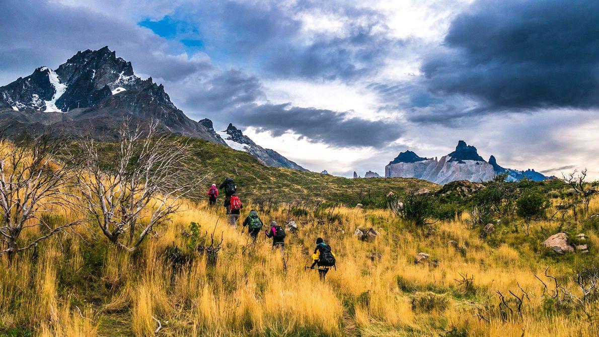 Grupo de caminhantes atravessa planícies relvadas