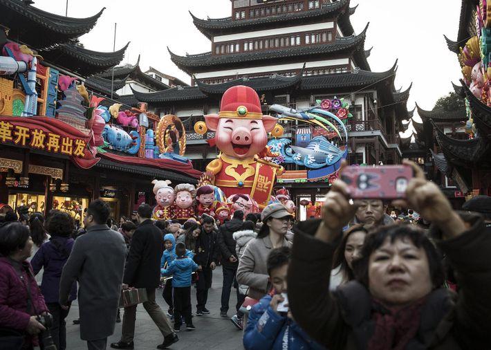 Decorações festivas com a temática do porco decoram o Jardim Yuyuan antes do Ano Novo Lunar ...