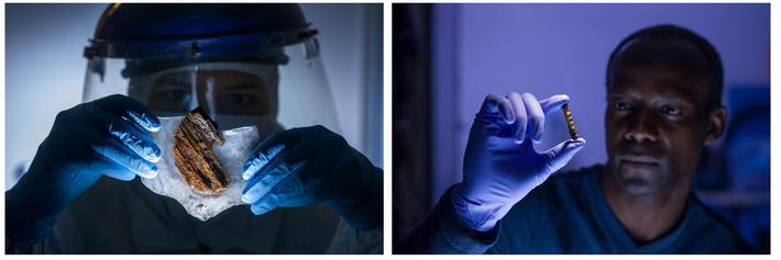 Esquerda: O cientista forense, Frankie West, examina amostras de madeira do porão do navio na esperança ...