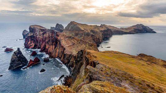 Descubra o Cobiçado Vinho que Colocou a Ilha da Madeira no Mapa