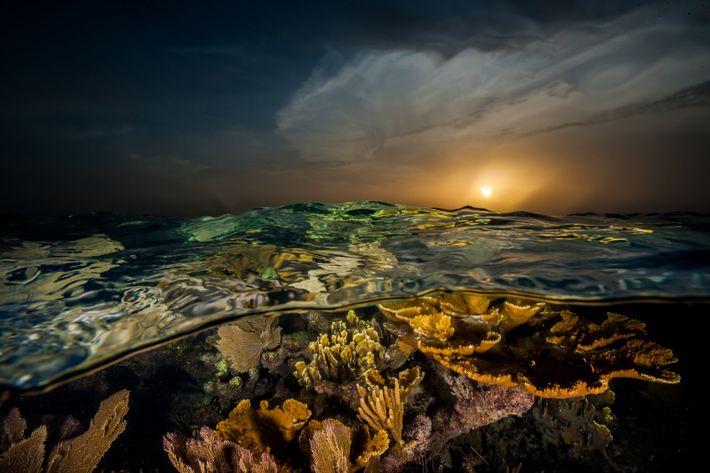 por-do-sol corais