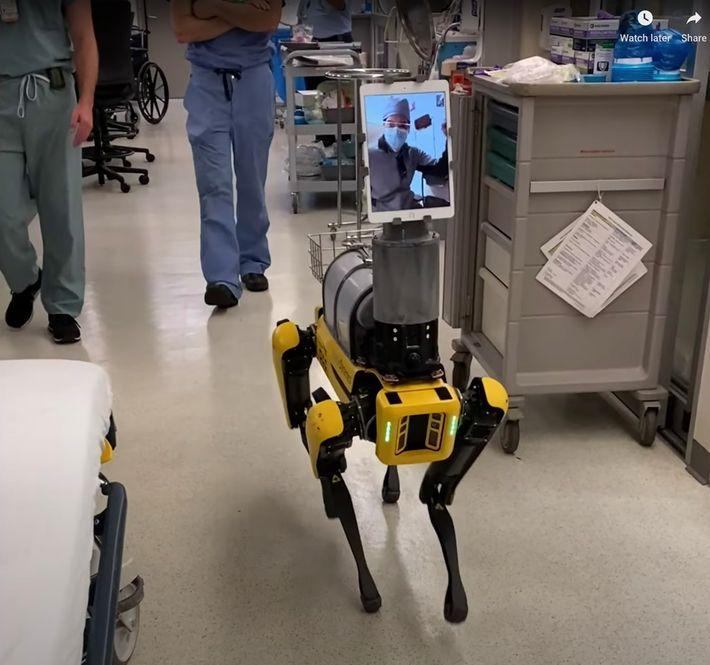 O Spot, um robô semelhante a um cão desenvolvido pela Boston Dynamics, permite que os profissionais ...
