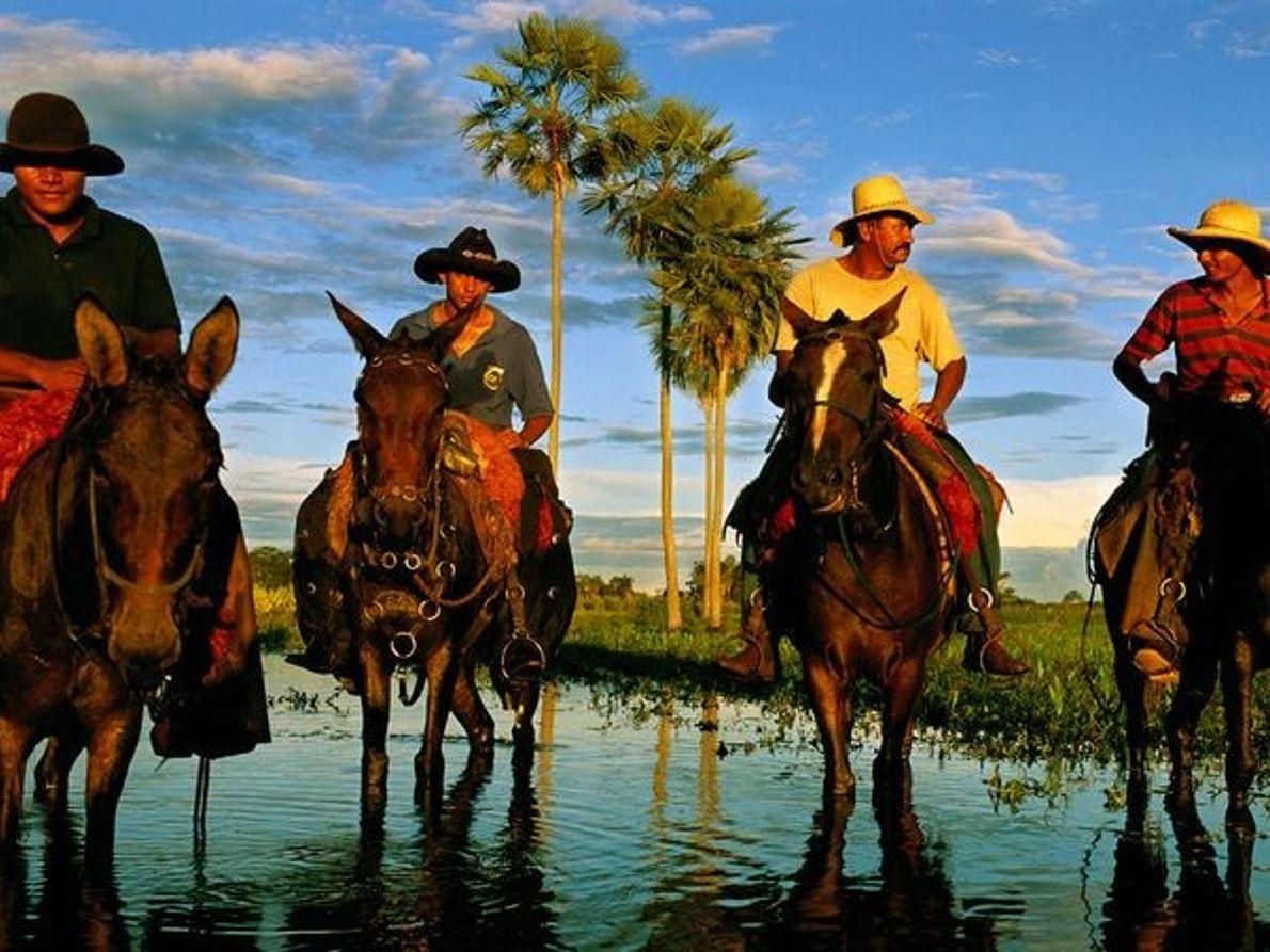 Vaqueiros do Pantanal