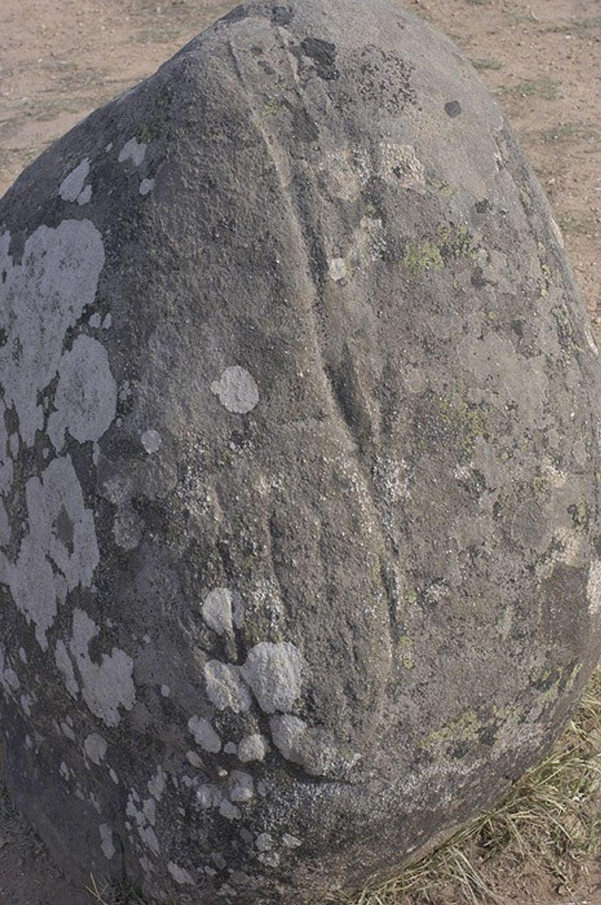 Fotografia de uma impressão de cajado de pastor