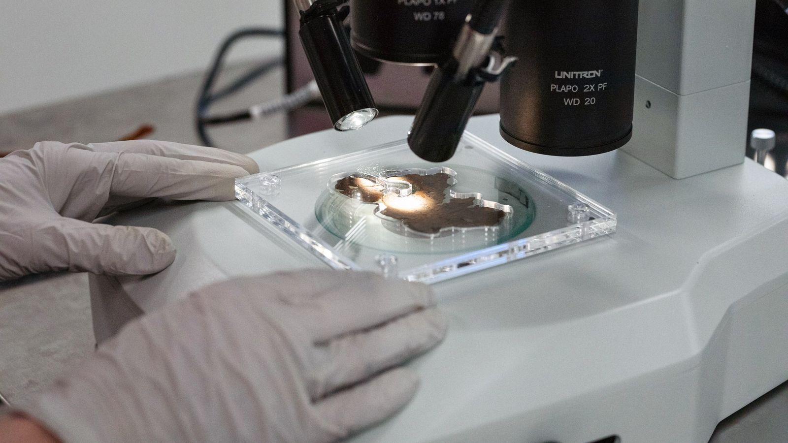 Os investigadores examinaram cuidadosamente as superfícies dos 16 fragmentos ao microscópio – mantendo intactas as partes ...