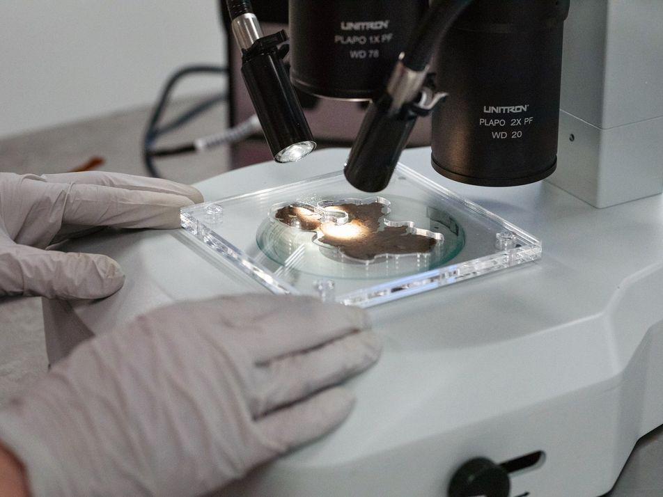 'Manuscritos do Mar Morto' no Museu da Bíblia São Falsificações