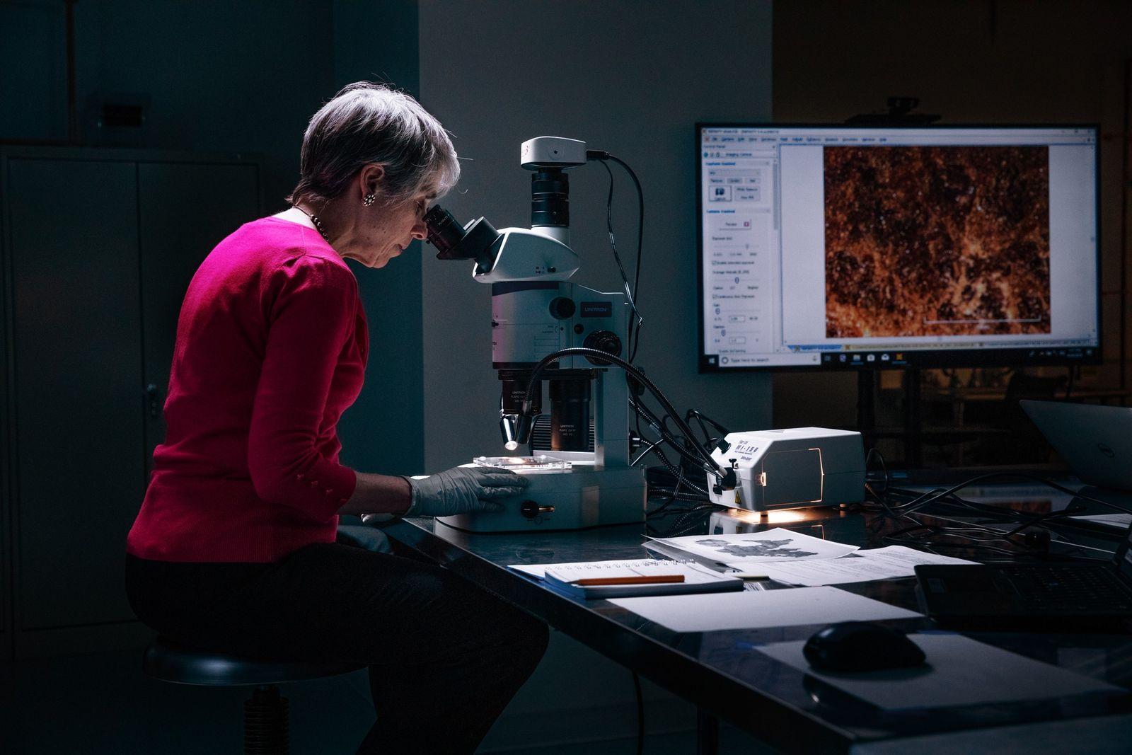 A investigadora Abigail Quandt, chefe do departamento de conservação de livros e documentos do Museu de ...