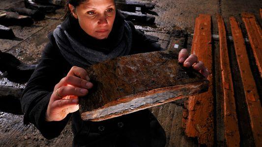 Anéis das Árvores Usados Para Ajudar a Datar Sítios Arqueológicos