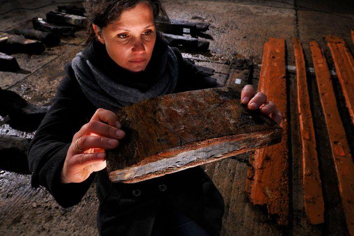 Arqueólogos usam a dendrocronologia para datar um naufrágio encontrado na costa da Alemanha. Ao analisarem os ...