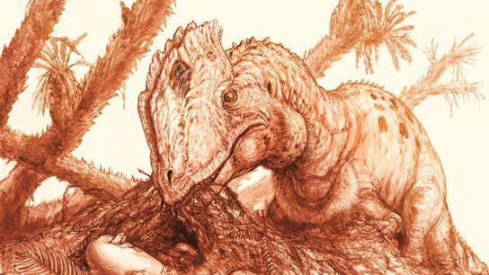 Esta reconstrução mostra um Dilophosaurus wetherilli adulto a cuidar de uma ninhada de ovos.