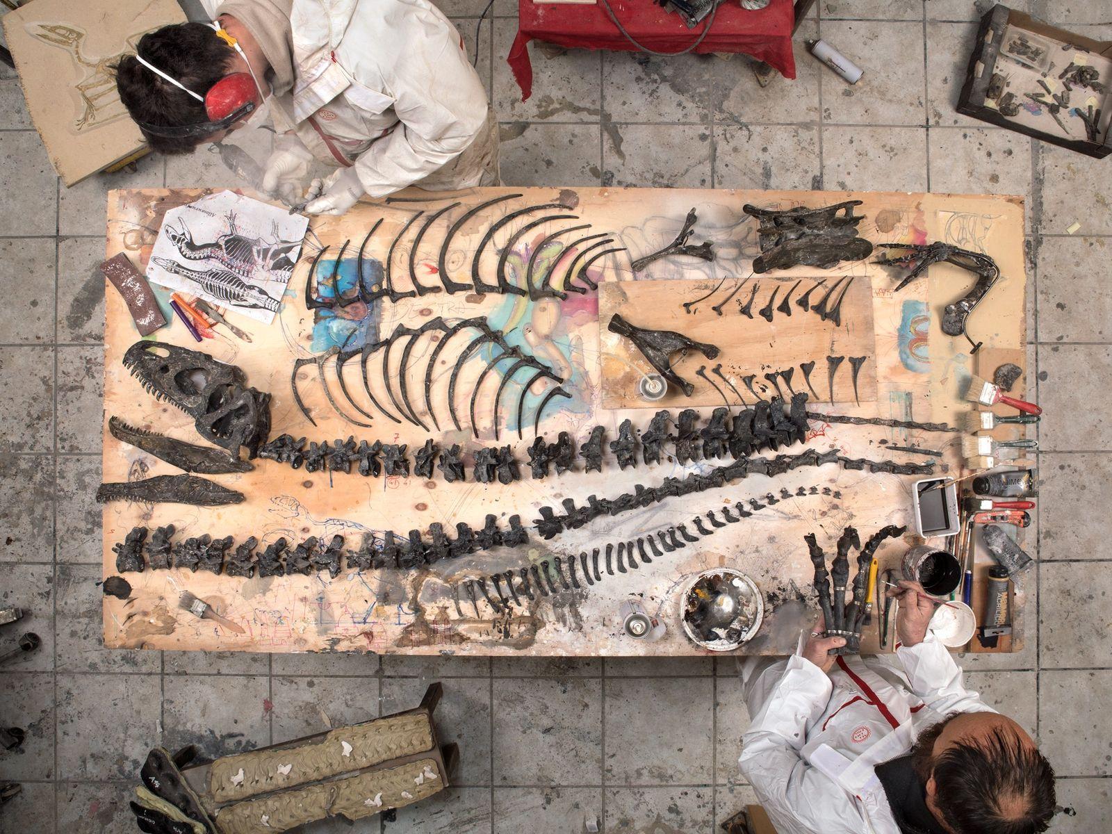 Na Zoic, uma empresa de restauração de fósseis, em Trieste, Itália, os trabalhadores montam um Allosaurus ...