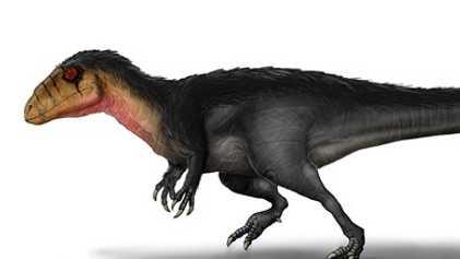 Lusovenator Santosi: Paleontólogos Descobrem Nova Espécie do Jurássico Superior de Portugal