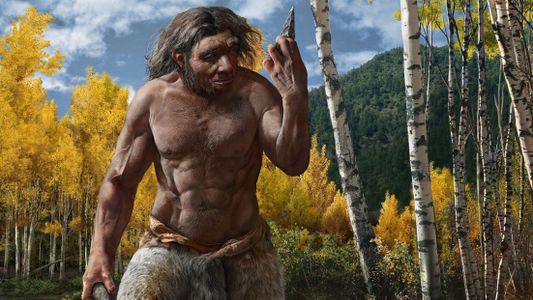 Crânio de 'Homem Dragão' pode pertencer a nova espécie, sacudindo a árvore genealógica humana