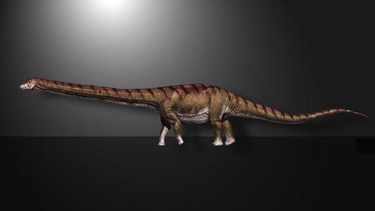 Conheça o  Patagotitan mayorum, o maior dinossauro alguma vez descoberto.