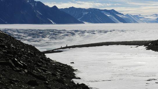 Glaciar Shackleton