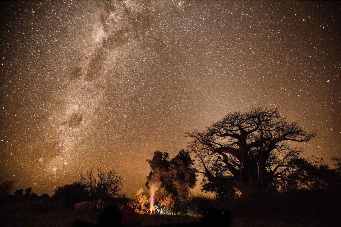 O explorador da National Geographic, Steve Boyes, e a sua equipa do Okavango Wilderness Project