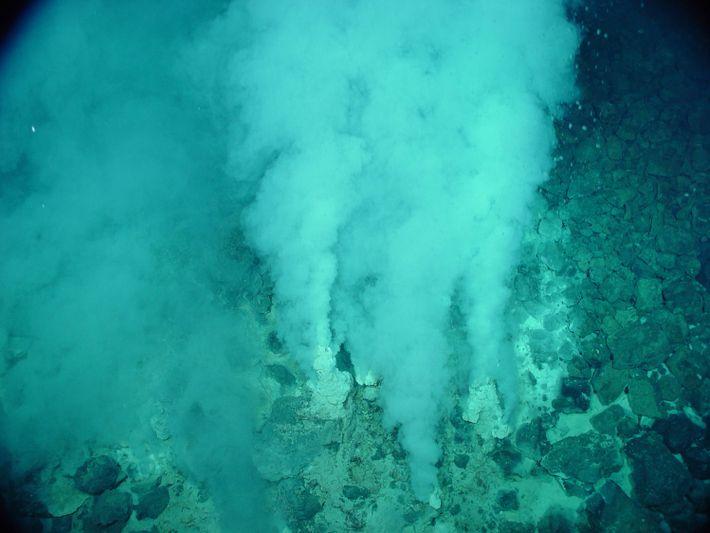 Uma fonte hidrotermal no fundo oceânico terrestre que liberta uma grande quantidade de compostos químicos e ...