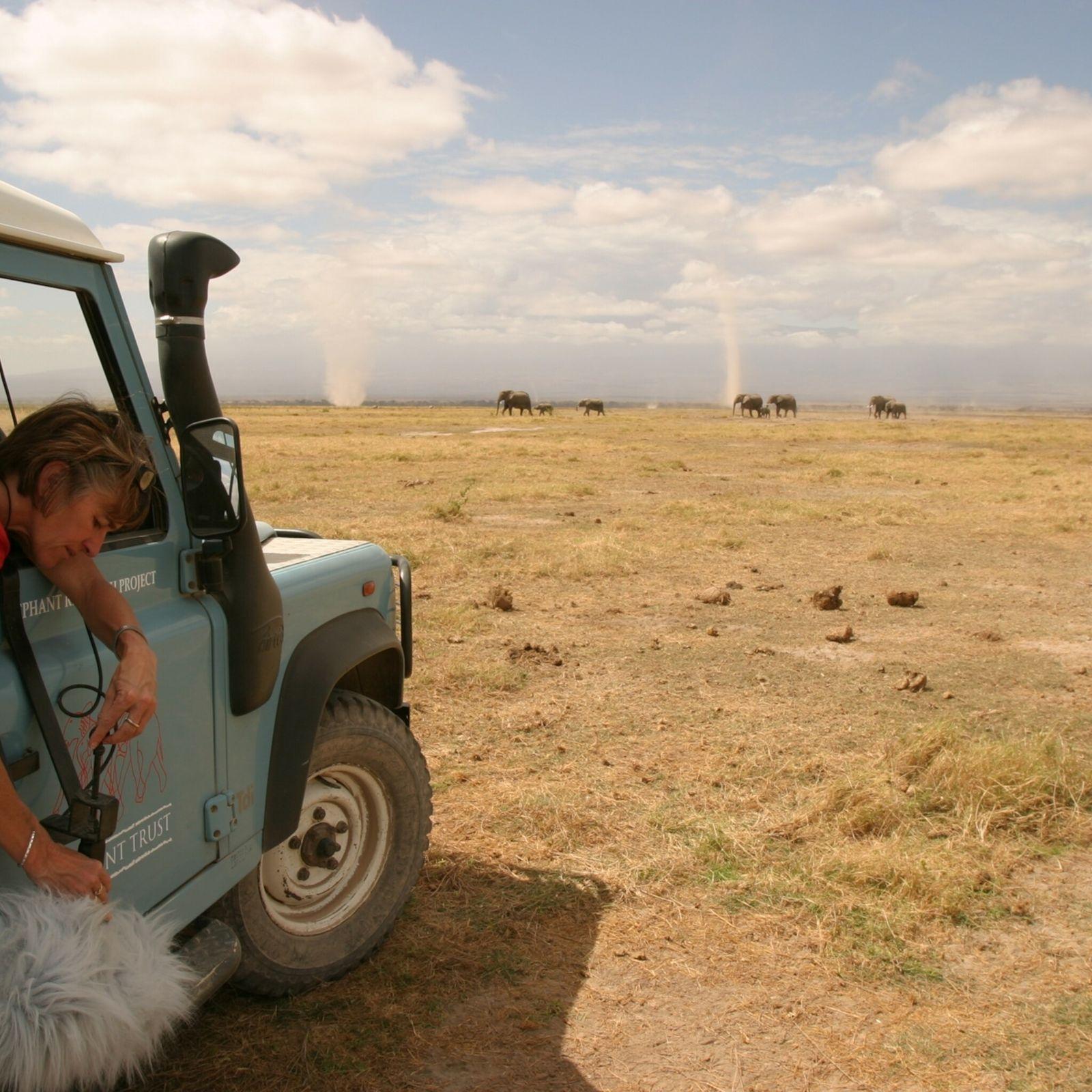 Joyce Poole grava vocalizações de elefantes