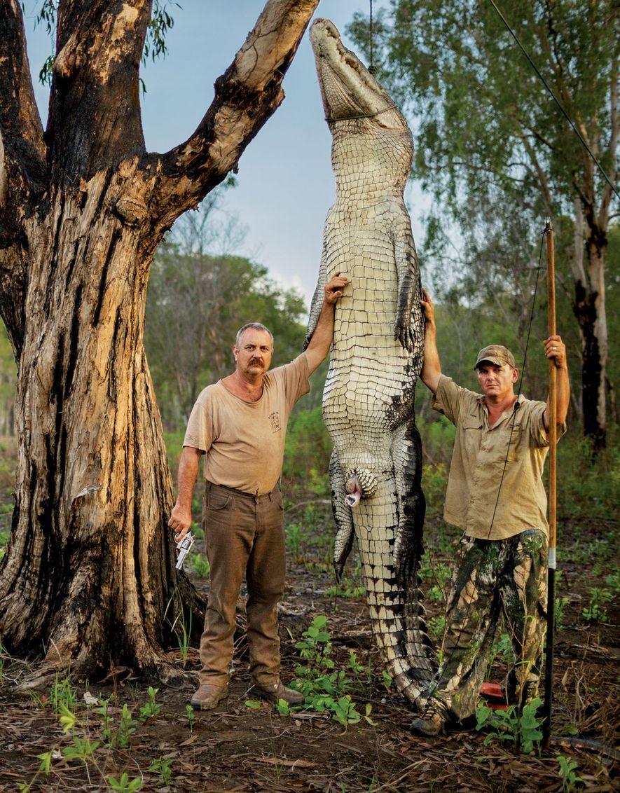 Roger Matthews (à esquerda) e Aaron Rodwell posam com um crocodilo-marinho de 450 quilos e 4,5 metros de comprimento, capturado e morto por ambos de forma legal, no Território do Norte da Austrália.
