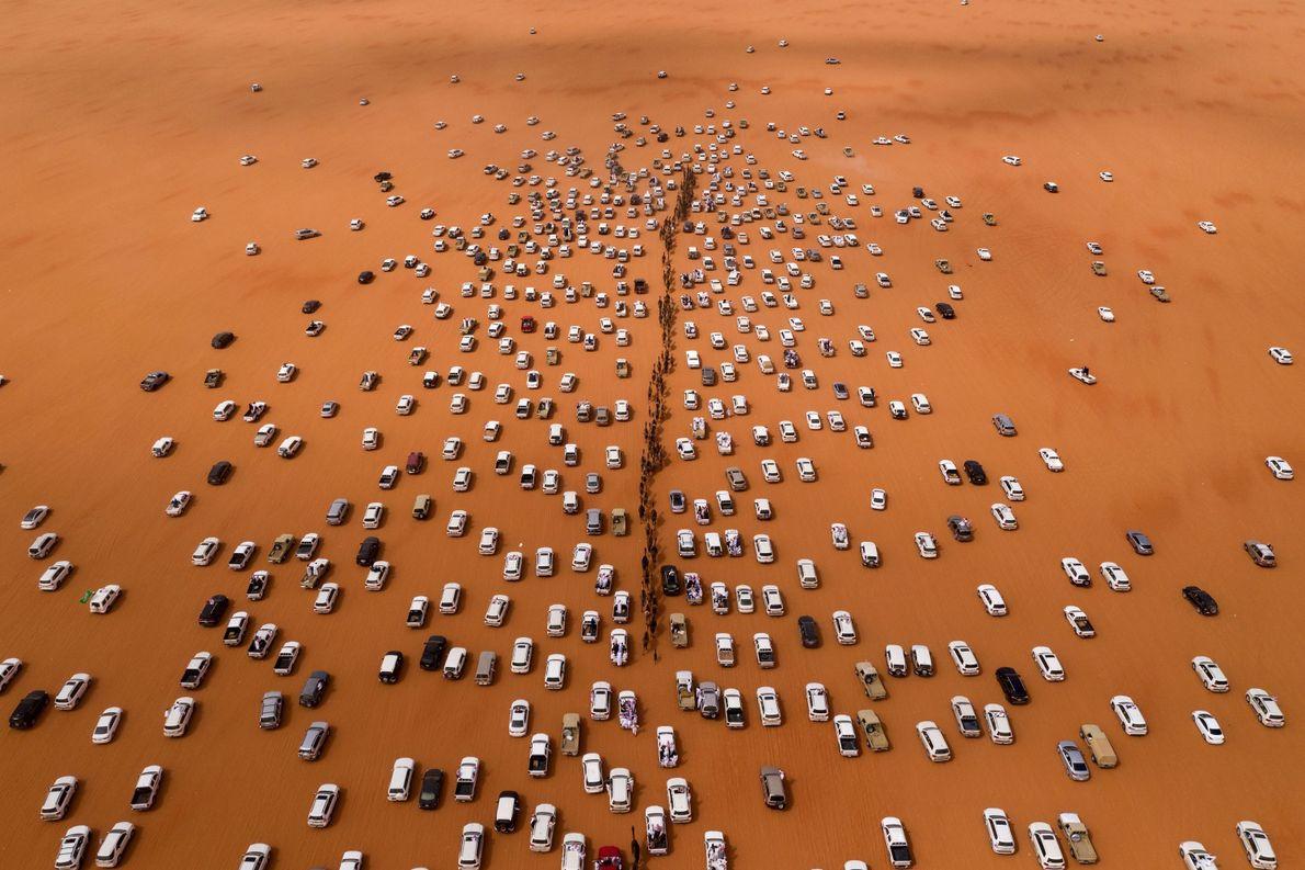 Desfile de Camelos