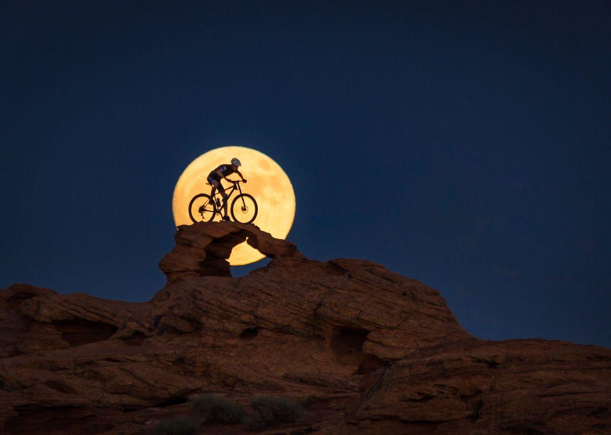 À Luz da Lua
