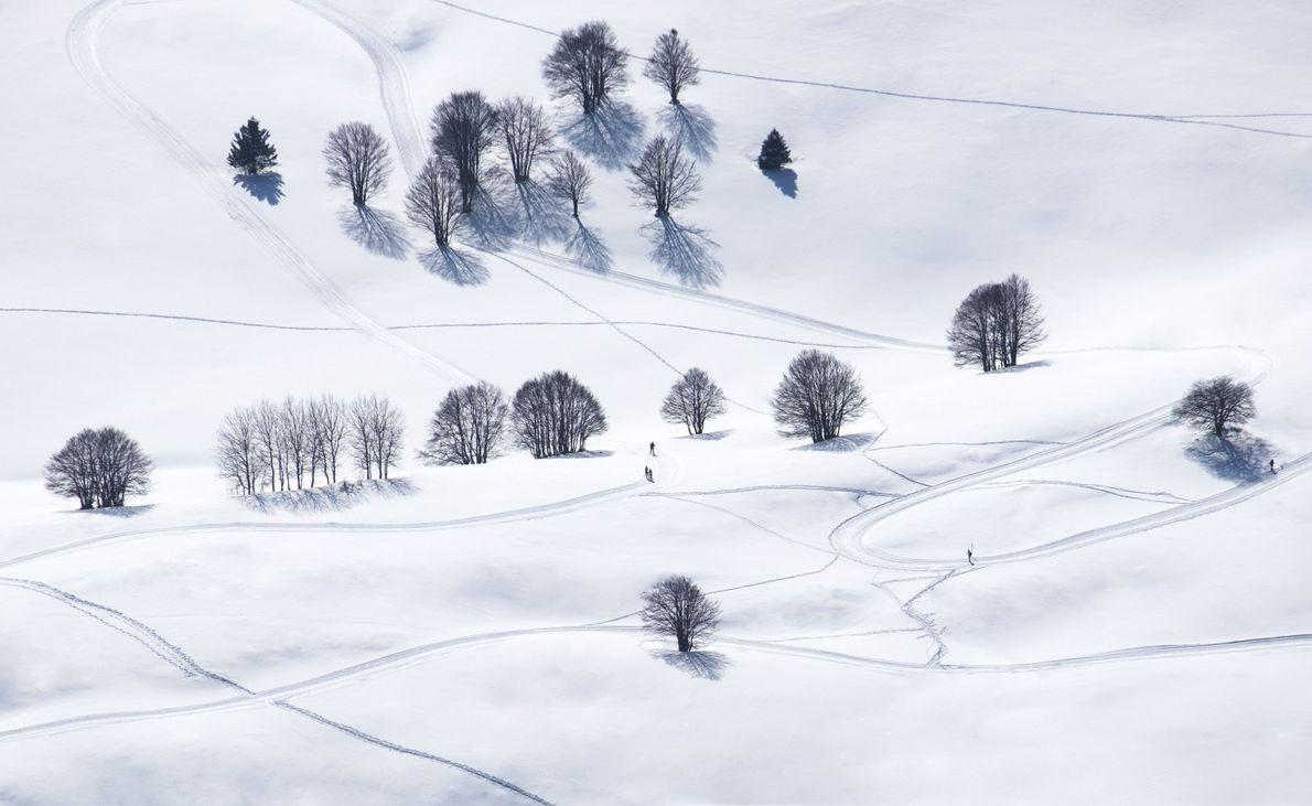 Ski de Primavera