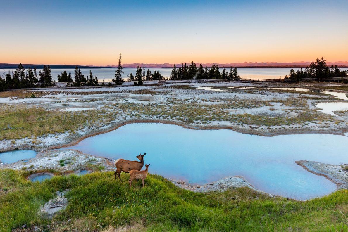 Nascer do Sol em Yellowstone