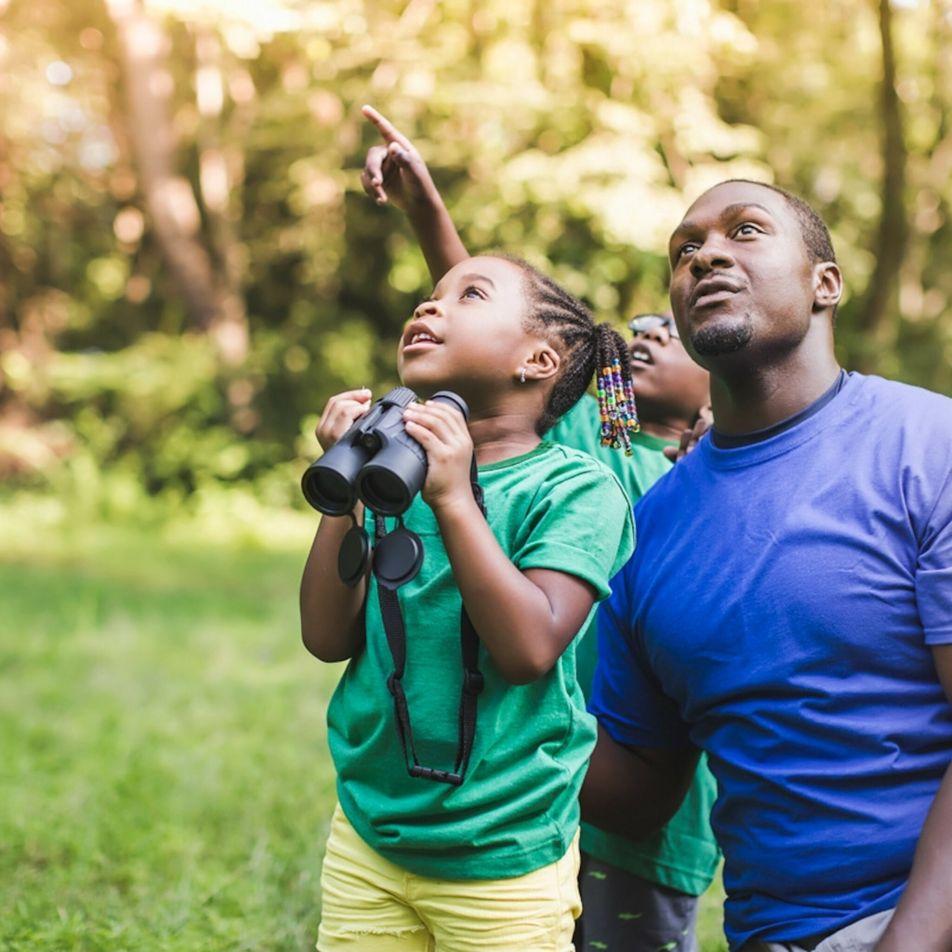 Respeitar a natureza: manter as crianças curiosas sem perturbar a vida selvagem