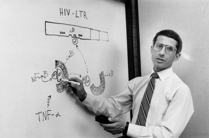 No dia 31 de agosto de 1990, o Dr. Anthony Fauci falava com membros do seu ...