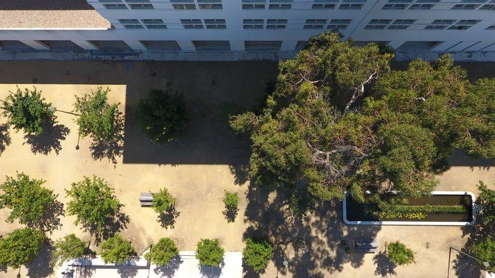 campus da FCUL