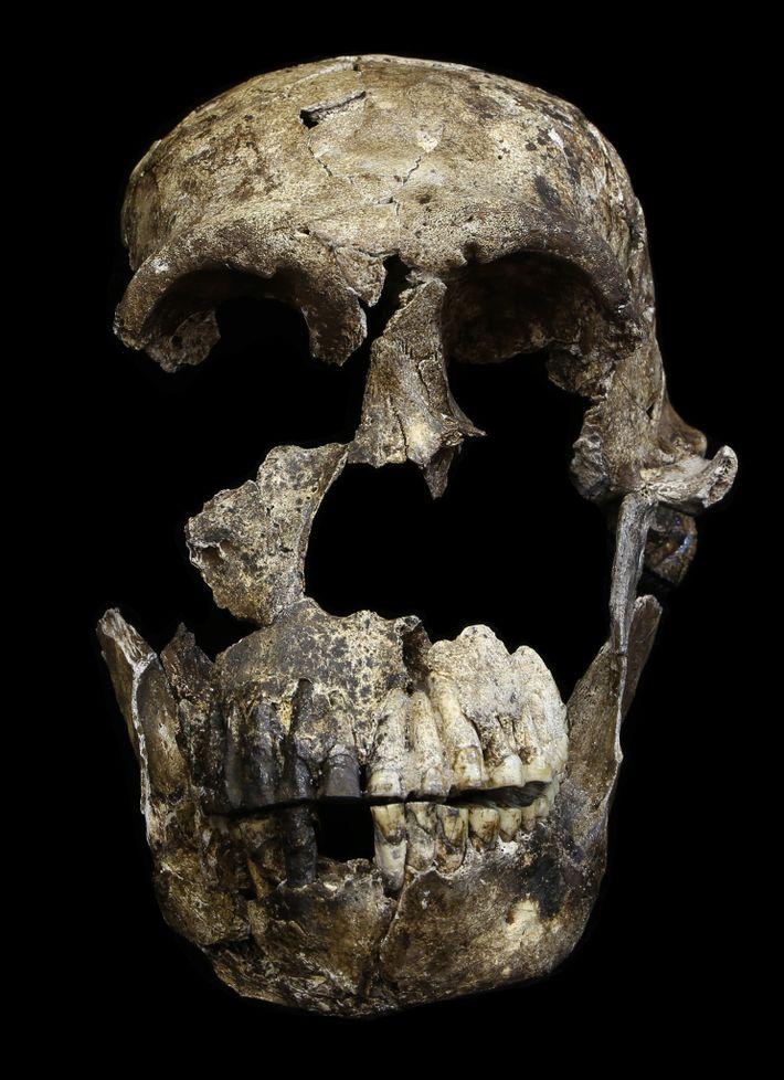 Restos Mortais do Homo Naledi