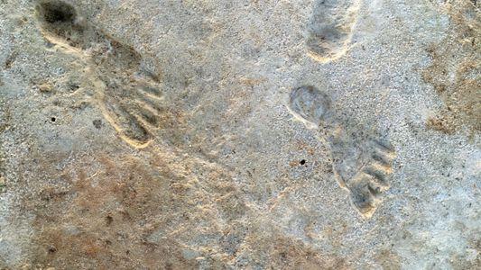 Pegadas fósseis antecipam a chegada de humanos às Américas em milhares de anos
