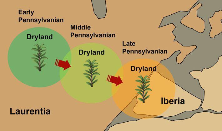 """Visão ampliada da região central do Pangeia-A (configuração """"Wegeneriana"""") que mostra uma ligação geográfica entre Laurentia ..."""