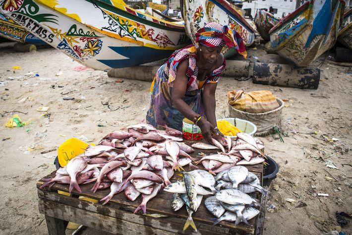 Imagem de um mercado de peixe, no Dakar, Senegal