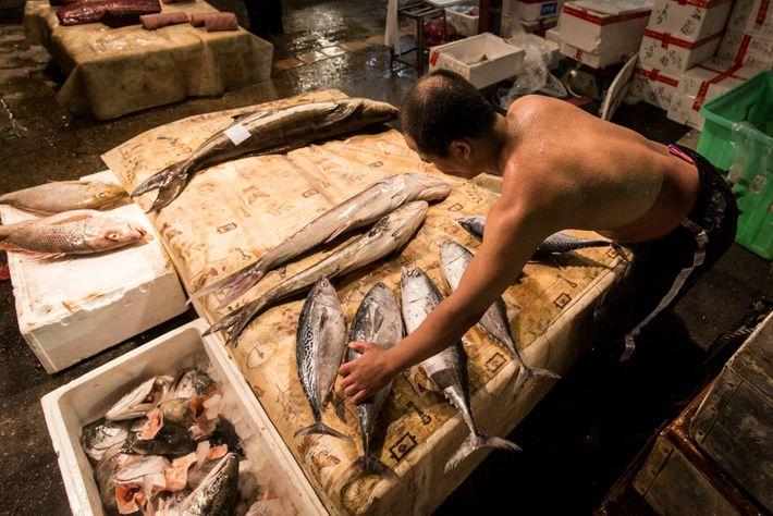 Estes peixes num mercado de Keelung, em Taiwan, provavelmente foram fruto de um trabalho árduo. Das ...