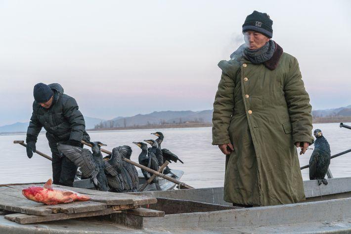 Dois dos últimos pescadores com corvos-marinhos do rio Yalu