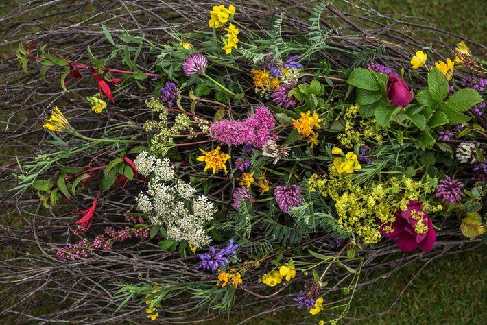 Imagem de flores de uma cerimônia pagã do casamento no anel de Brodgar nas consoles de ...