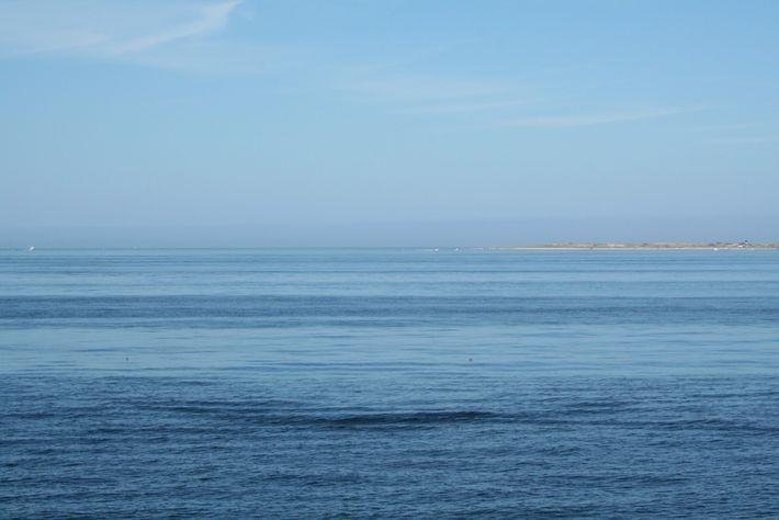 Manifestação superficial de um trem de ondas internas próximas da superfície ao largo de Cape Cod, ...