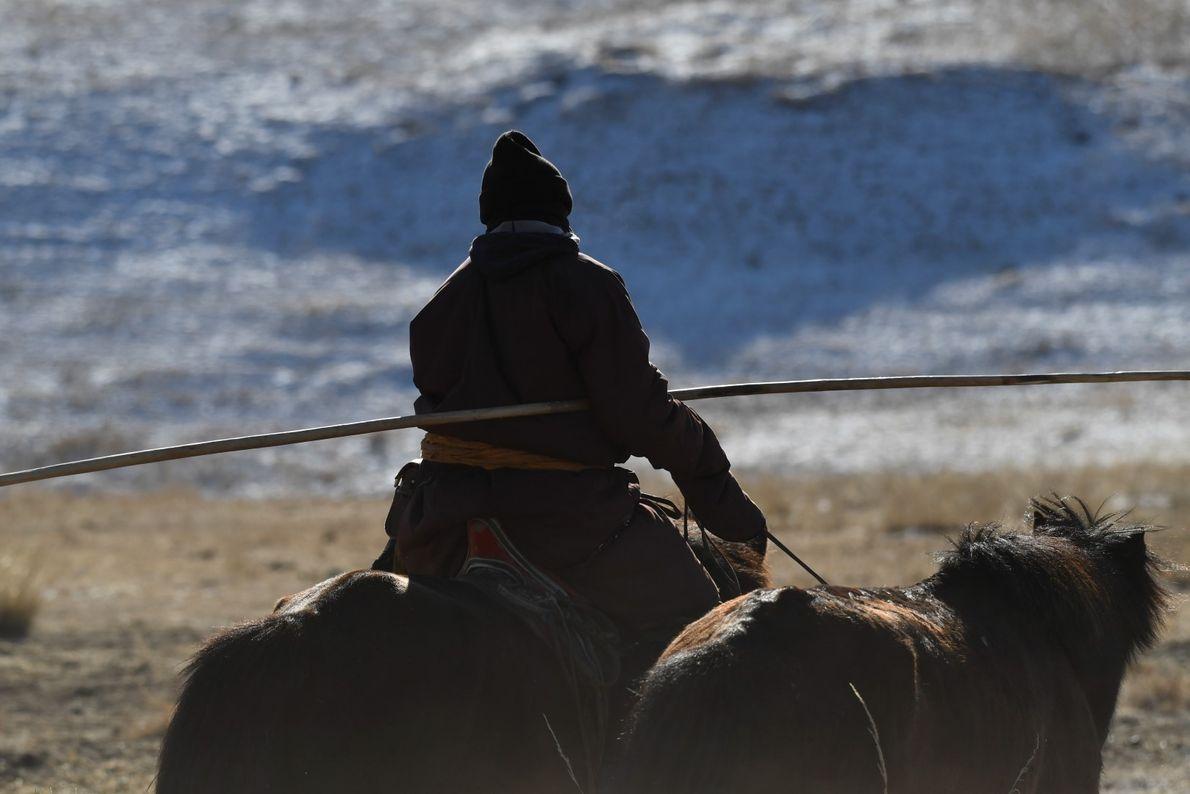 Guarda a fazer a patrulha no Parque Nacional de Hustai, perto da capital Ulan Bator.