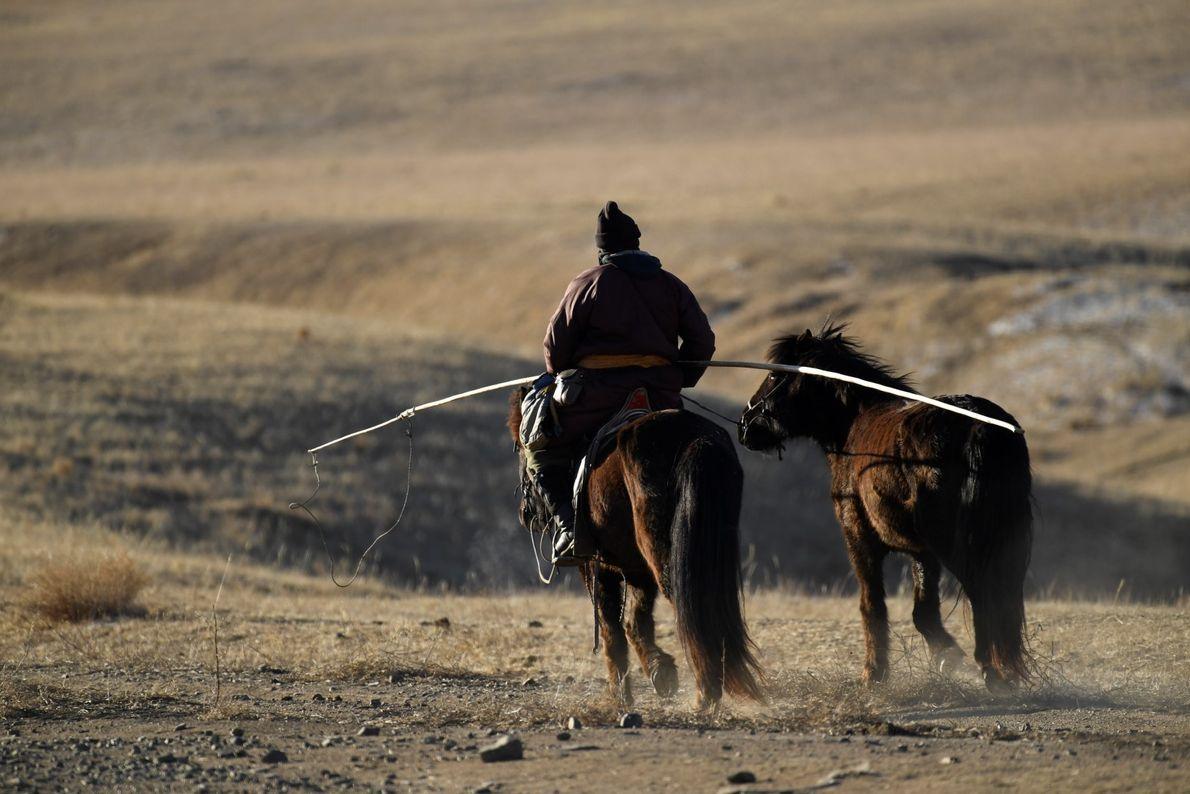 Ranger patrulha o Parque Nacional de Hustai, perto da capital Ulan Bator.