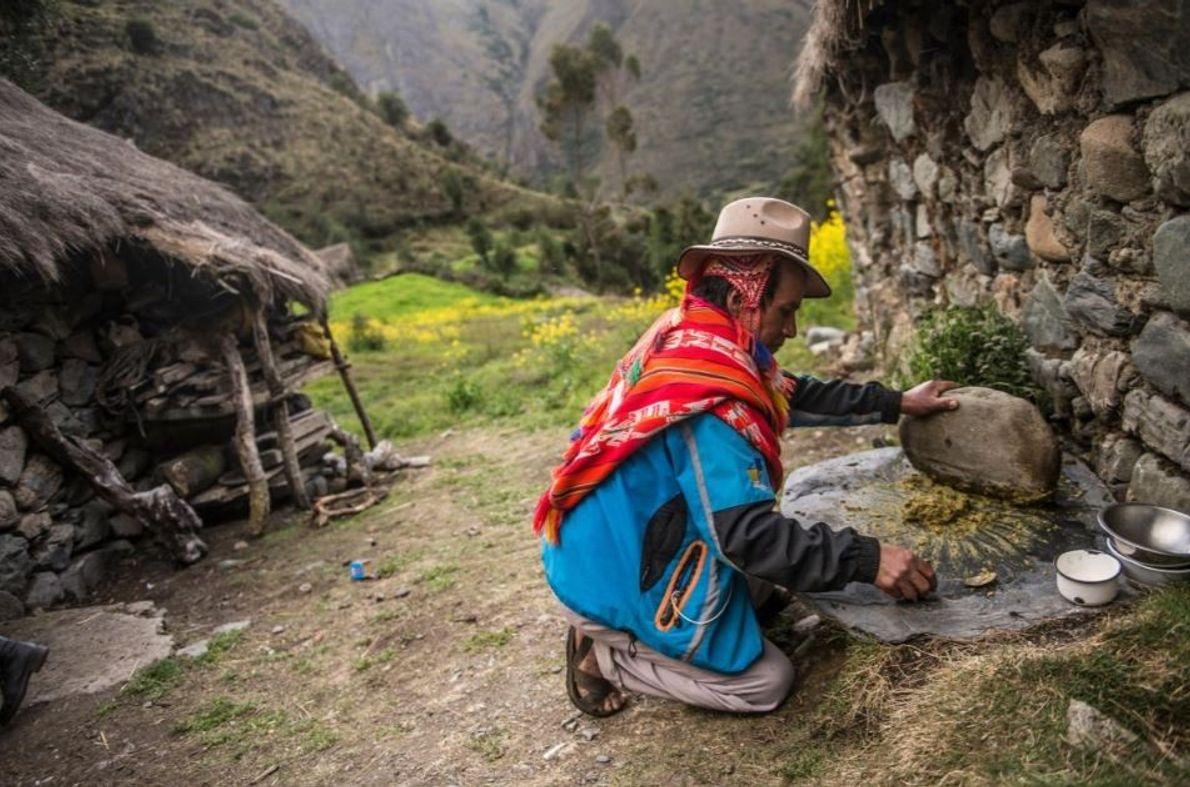 Mario, um agricultor do Vale Sagrado no Peru, esmaga ingredientes com uma pedra enorme, como se ...