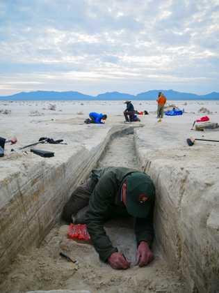 David Bustos a escavar pegadas