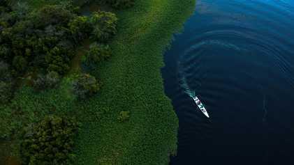 Será que a floresta tropical da Amazónia contribuiu para a 'Pequena Idade do Gelo' do século ...