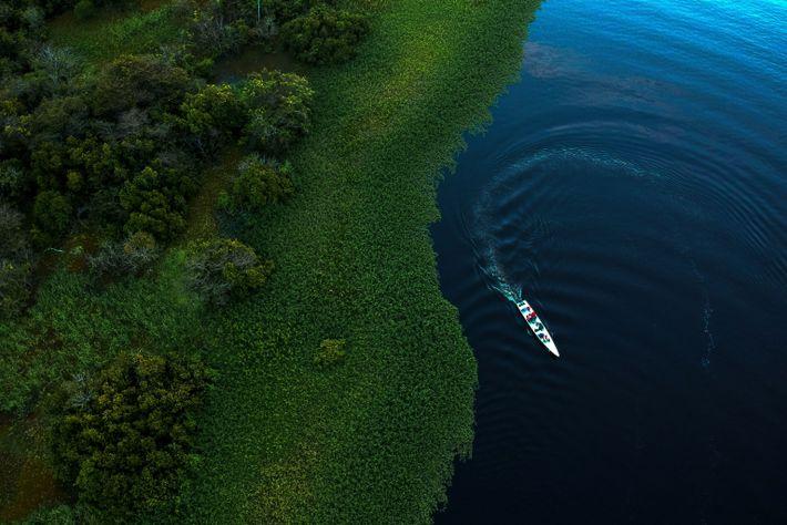 lago Maciel na Amazónia