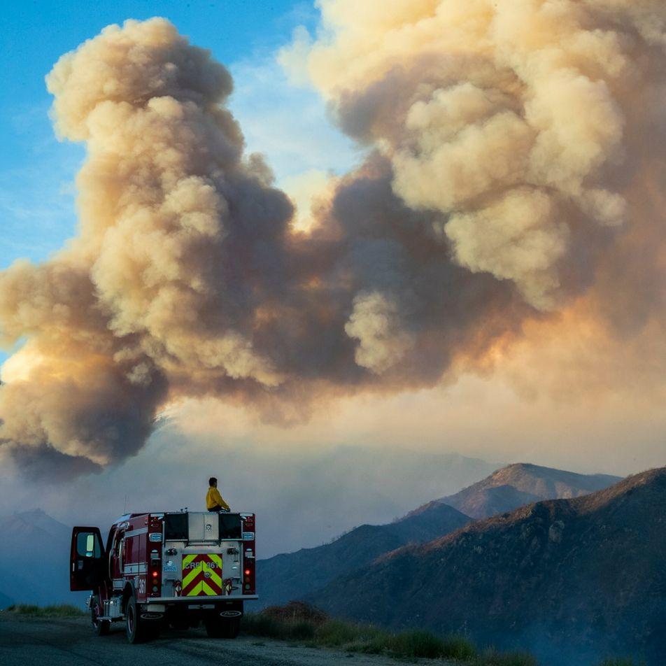 Fumo de incêndios florestais associado a taxas mais elevadas de morte por COVID-19