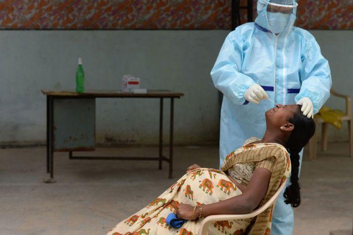 Mulheres grávidas querem ser vacinadas